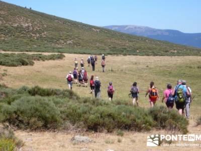 Pinar de Canencia y Mina de Plata del Indiano;foro senderismo madrid;rutas monasterio de piedra